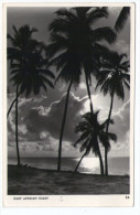 EAST AFRICAN COAST (EDITION AFRICA IN PICTURES - S.SKULINA - PEGAS STUDIO) DAR ES SALAAM CANCEL 1960 - Tanzania