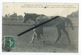 CPA - Courses De Chantilly - Réunion De Printemps - Médéah,pouliche De 3ans,gagnante Du Prix De Diane 1908 - Chantilly