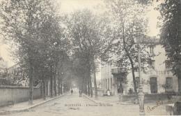 Montluel (Ain) - L'Avenue De La Gare - Hôtel Viret - Edition Vialatte - Carte Précurseur - Châtillon-sur-Chalaronne