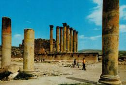GIORDANIA    JERASH   ARTHEMES  TEMPLE      (VIAGGIATA) - Giordania