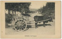 Reunion Un Transport Attelage De Zebu - La Réunion