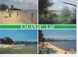 LACANAU-LAC (33-Gironde), Plages, Enfants, Planches à Voile, Ed. Elcé - France