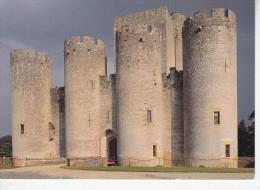 MAZERES (33-Gironde), Château De Roquetaillade, L'entrée Façade Ouest, Ed. Combier - France