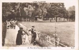 12373. Postal LYON (Rhone Alpes). Le Parc De La Tête D´or. Les Daims - Lyon