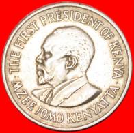 ★WITH LEGEND★ KENYA★ 1 SHILLING 1971! LOW START★NO RESERVE! - Kenya