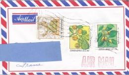 Z2] Enveloppe Cover Zimbabwe Noël Christmas Elephant Plantes Plants Fruit - Zimbabwe (1980-...)