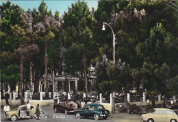 3-4141- Palmi - Elia - Pineta - Reggio Calabria - F.g. Viaggiata - Reggio Calabria