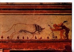 IT847 - TARQUINIA - Necropoli - Tomba Dei Tori - Italie