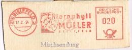 Germany 1954 Meter Cancellation Green Plant Leaf Chlorophyll,  Muller, Bielefeld - Otros