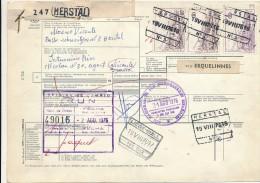 HERSTAL - 1976  ,  Paketkarte Nach Spanien   -  Big Letter, Dispatch: 4,00 € - Belgien