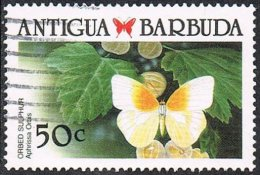 Antigua SG1238 1988 Caribbean Butterflies 50c Good/fine Used - Antigua Y Barbuda (1981-...)
