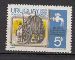 ##14, Uruguay, Eau, Water, Aqueduc, Champlure, Boeuf, Taureau, Taurus, Tonneau, Bois, Chat, Cat, Wood, Cloche, Bell - Uruguay