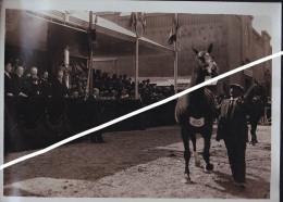 PORT DE VERSAILLES LEBRUN CONCOURS HIPPIQUE ANIMAUX REPRODUCTEURS - Sport