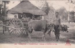 CAMBODGE - PHNOM PENH / ATTELAGE ET CHARRETTE DU PAYS