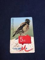 BULGARIA-BIRD-Oenanthe Pleschanka-used - Bulgarie