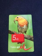 BULGARIA-BIRD-Erithacus Rubecula-used - Bulgarie