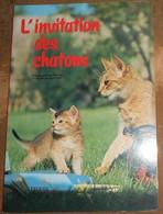 L�invitation des chatons