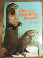 Etes-vous sages, belles images ?