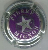 CAPSULE-CHAMPAGNE MIGNON Pierre N°14v-violet Foncé Ctr Métal étoile Argent - Mignon, Pierre