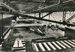 AVIATION(TAI) - 1946-....: Ere Moderne