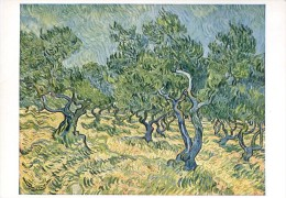Van Gogh : Oliviers à Saint Rémy - Pittura & Quadri