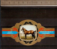 BAGUE DE CIGARE Grand Format 11,5 X 6 /LUGANO PAARDEN IV  N° 77  / CHEVAL AMERIKAANSE DRAVER STANDARDBRED - Bagues De Cigares
