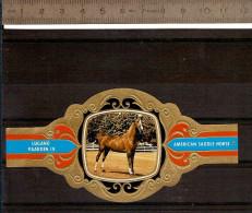 BAGUE DE CIGARE Grand Format 11,5 X 6 /LUGANO PAARDEN IV  N° 78  / CHEVAL AMERICAN SADDLE HORSE - Bauchbinden (Zigarrenringe)