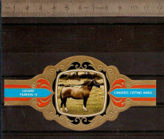 BAGUE DE CIGARE Grand Format 11,5 X 6 /LUGANO PAARDEN IV   N° 80  / CHEVAL / CANADEES CUTTING  HORSE - Bagues De Cigares