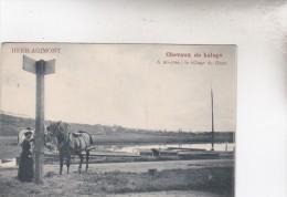 HEER  AGIMONT  CHEVAUX DE HALAGE - Belgien