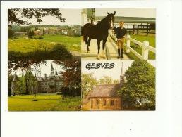 Gesves Ecole D'équitation - Gesves
