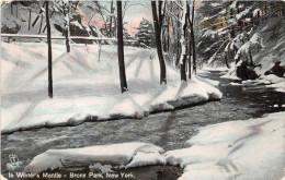 Z15751 United States Of America New York Bronx Park Winter - Bronx
