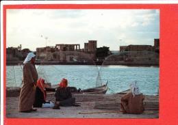 DUBAI Cp Animée Fishermen      113 Awni - Dubai