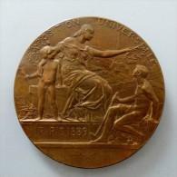 MEDAILLE GRAND MODULE PARIS 1889 SIGNE DANIEL DUPUIS  POID 100 GR DIAM 68 MM QUALITE - Professionali / Di Società