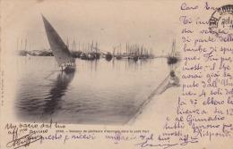 SFAX (Tunisie) Bateaux De Pêcheurs D ' éponges Dans Le Petit Port  - (oblitération De 1901) - Tunisia