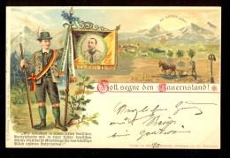 Gott Segne Den Bauernstand! Es Werde Licht / Litho. Verlag Von Marianne Brandais / Year 1899 / Old Postcard Circulated - Österreich