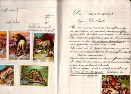 Cahier De Sciences. Lycée Ampère, Annexe De Perrache, Classe 6ème, Année 1936-37. Images Et Chromos En Illustration. - Diplômes & Bulletins Scolaires