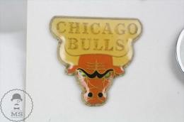 USA Basketball Team - Chicago Bulls - Pin Badge #PLS - Baloncesto