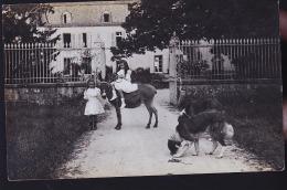 CHATEAU DE LA MARNE A SITUER FILLETTES ANE ET LEURS CHIENS CP PHOTO - Frankreich