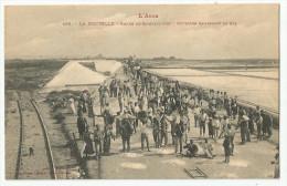 CPA  AUDE - 11 -  La Nouvelle - Salins - Ouvriers Ramassant Le Sel - Port La Nouvelle