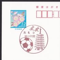 Japan Scenic Postmark, Dragonfly Soccer Ball  (js1870) - Other