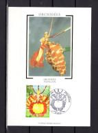"""Carte Maximum En Soie De 2005 N° YT 3765 """" ORCHIDEE PAPILLON """" En Parfait état. CM - Orchidées"""
