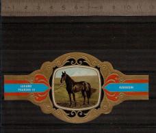 BAGUE DE CIGARE Grand Format 11,5 X 6 /LUGANO PAARDEN IV  N° 85  / CHEVAL : KABARDIN - Bagues De Cigares