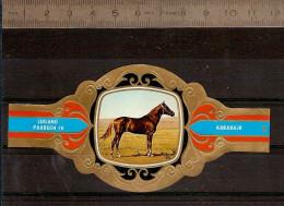 BAGUE DE CIGARE Grand Format 11,5 X 6 /LUGANO PAARDEN IV  N° 88  / CHEVAL : KARABAJR - Bagues De Cigares