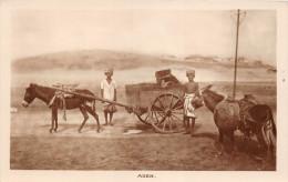 ¤¤  -   YEMEN   -   ADEN  -  Carte-Photo   -  Attelage D'Ane       -  ¤¤ - Yémen