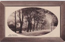 BISHOPS STORTFORD - THE CAUSEWAY - Hertfordshire