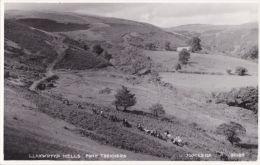 PONY TREKKERS - LLANWRTYD WELLS . JUDGES  30184 - Breconshire