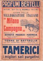 """Guida Delle Villeggiature Italiane """"Milano In Campagna"""". Preceduta Da Una Rivista Medico - Igienica. 1925 - Unclassified"""