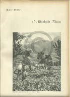 @@@ Rhodesia - Niassa Related 4 Pages With Photos Out Of  1959 Printed Book - Reproductions