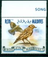 """Maldives 2014 """" Hors Série - Pipit Des Arbres """" Mnh*** - Passereaux"""