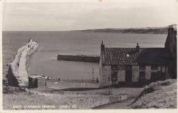 Royaume-Uni - Scotland - Saint-Andrews Harbour - Fife